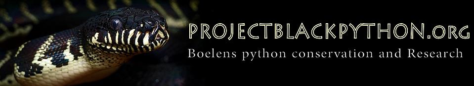 Project Black Python