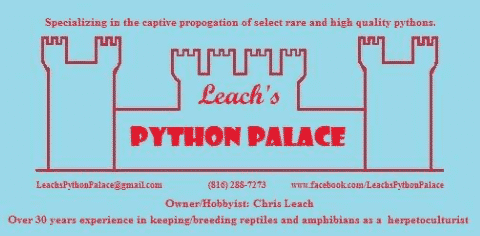 LeachPythonPalace