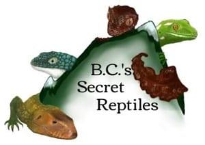 BC Secret Reptiles