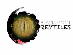 Blackmoon Reptiles