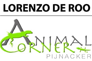 Lorenzo De Roo