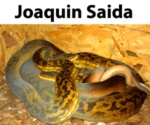 Joaquin Saida