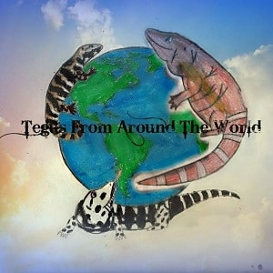 Tegus From Around The World