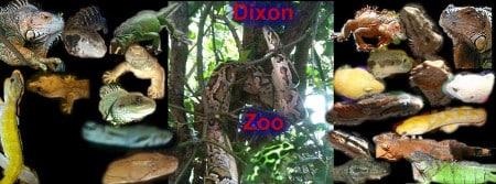 Dixon Zoo