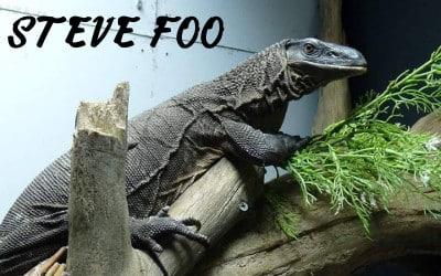 Steve Foo RN