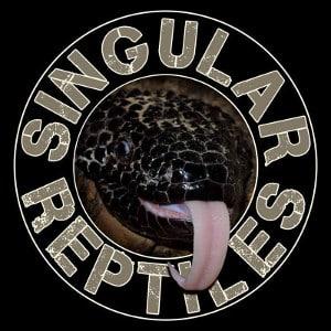 Singular Reptiles