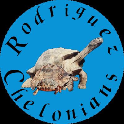 Rodriguez Chelonians
