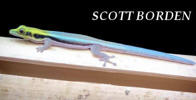 Scott Borden