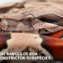The Ranges of Boa Constrictor Subspecies